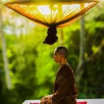 adult-asian-bald-buddhism-372281-scaled.jpg