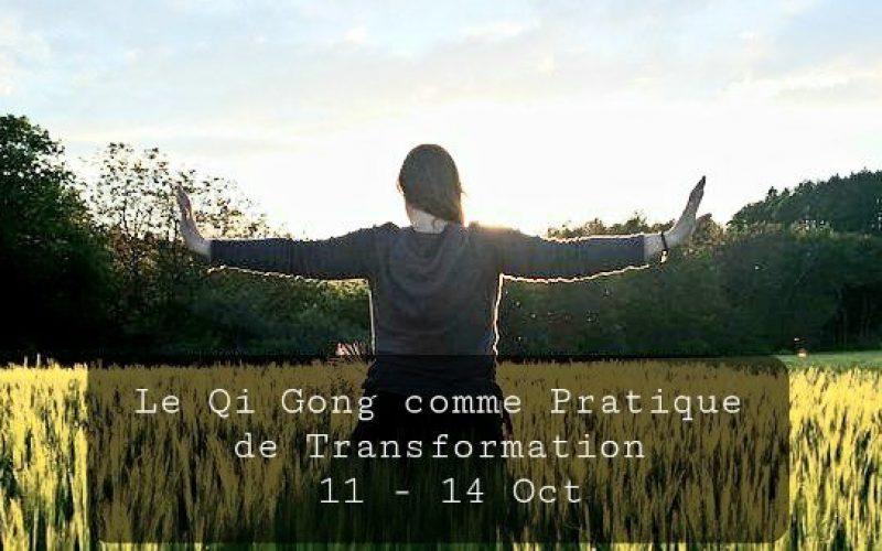 LE QI GONG COMME PRATIQUE DE TRANSFORMATIONDU 11 AU 14 OCT 2021